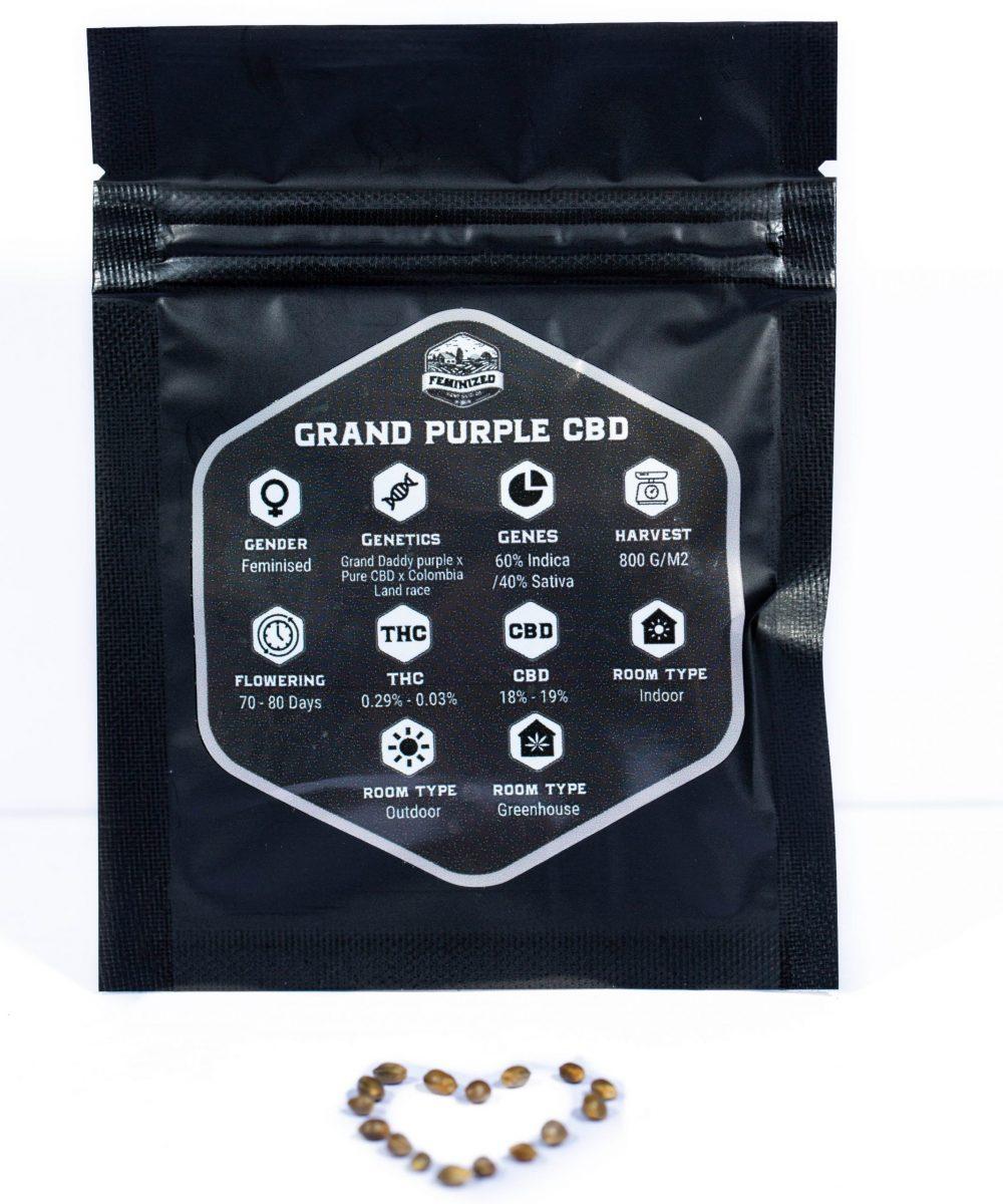 Hemp Seeds Co. CBD Feminized Seeds (15-Pack)