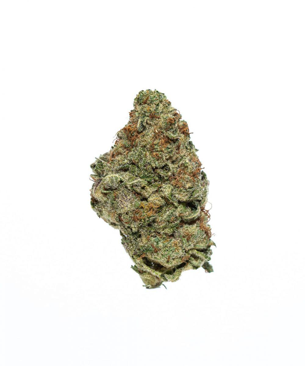 Gorilla Bomb (AA)