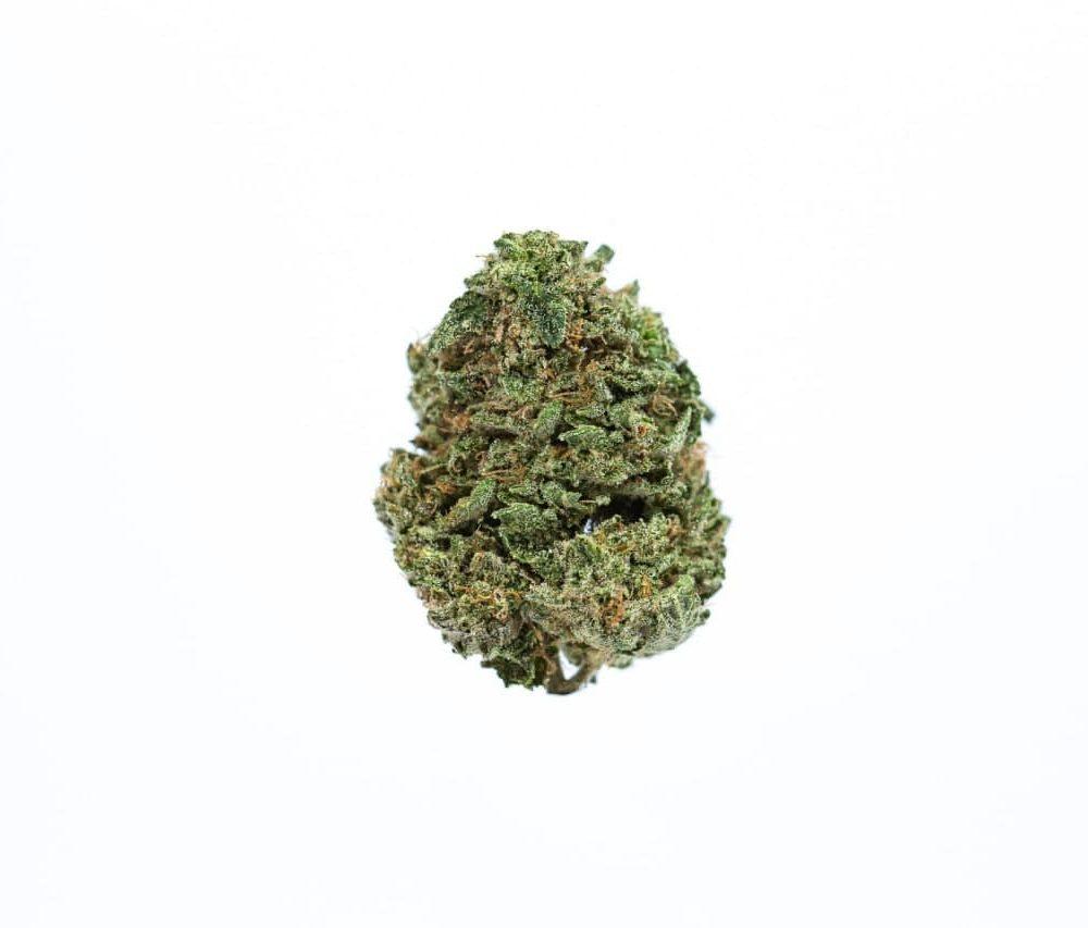 Pandora Cannabis: Premium OG Kush