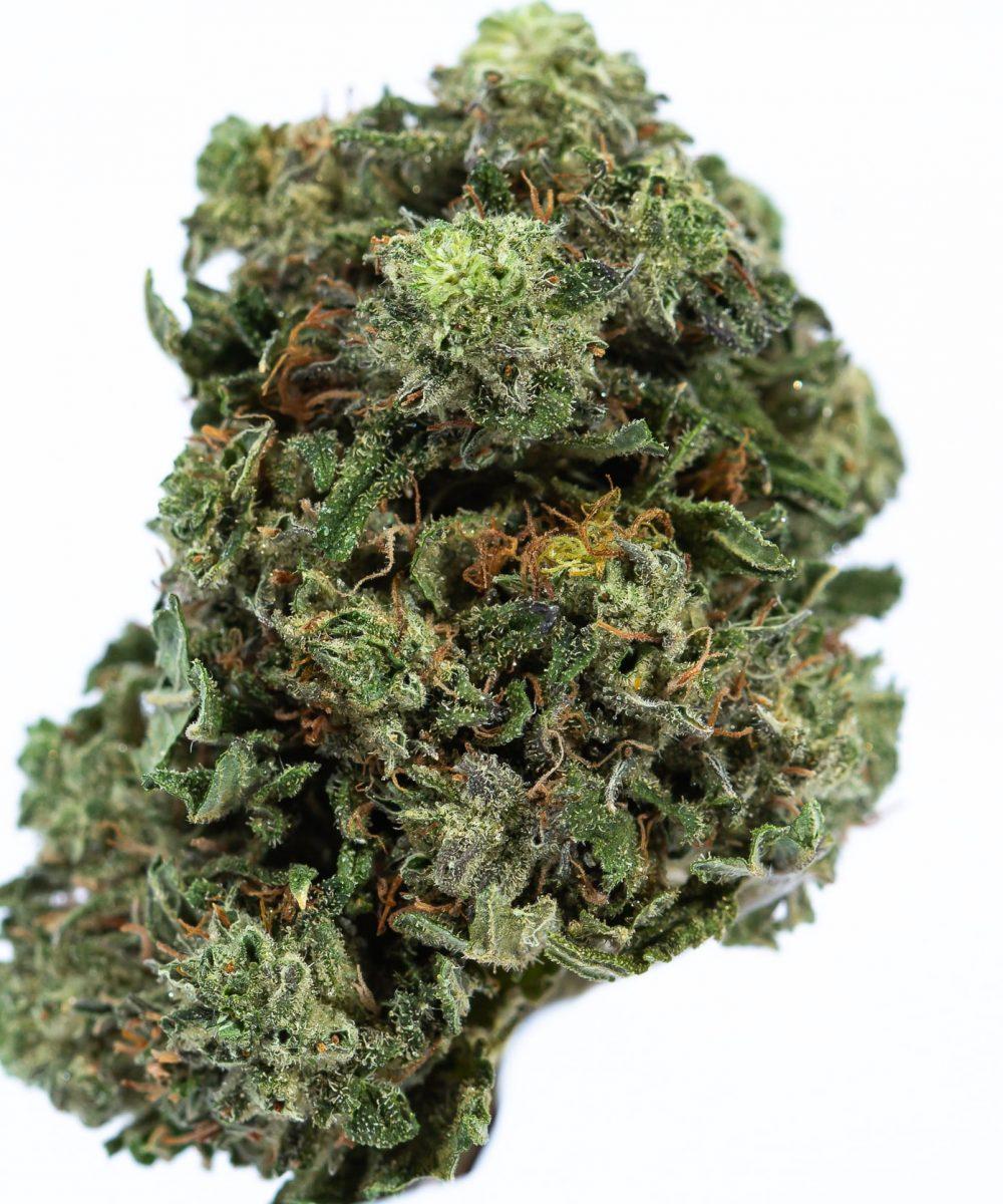 Blueberry Kush (AA)