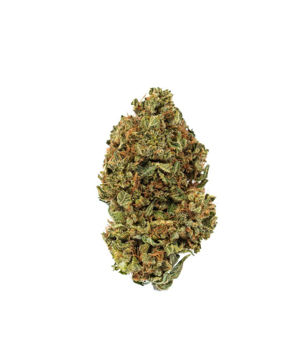 Rock Bud(AA)