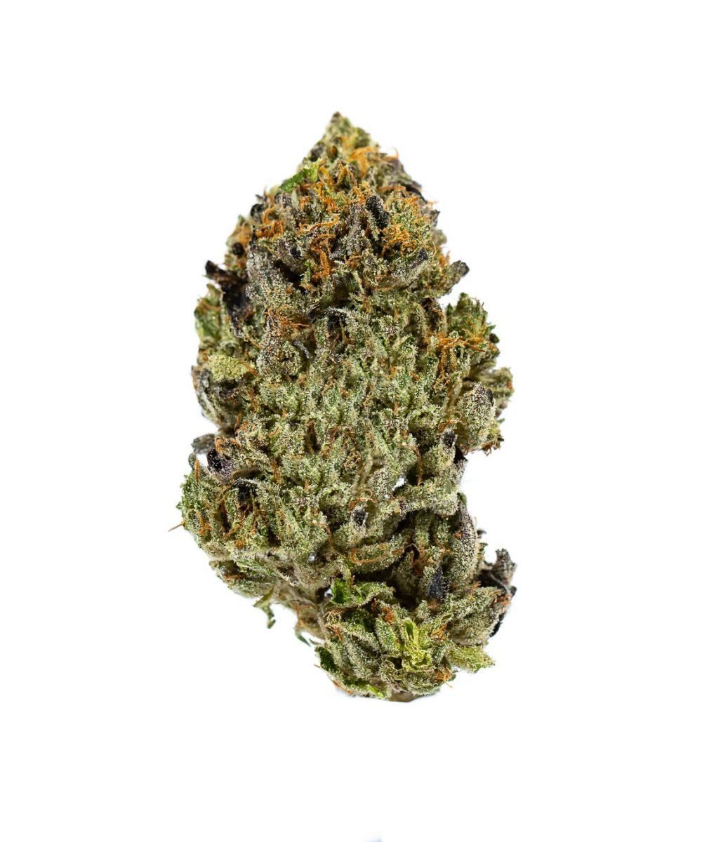 Pandora Cannabis: Cement Shoes
